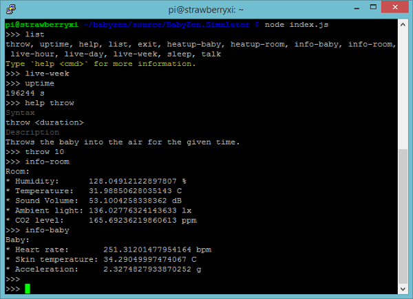 BabyZen RaspberryPi Simulator Node.js Shell Putty