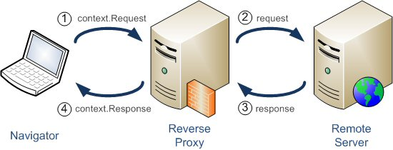 Structure of Reverse Proxy