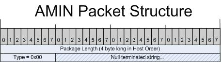amin packet structure