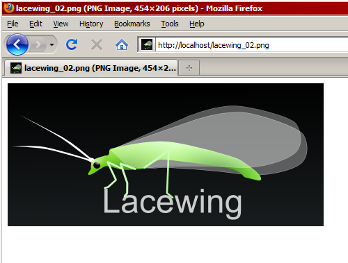 Lacewing logo transmitted over HTTP
