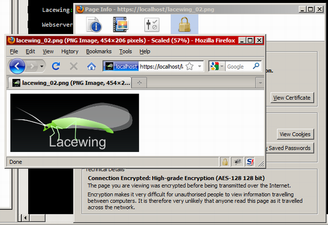 Lacewing logo transmitted over HTTPS