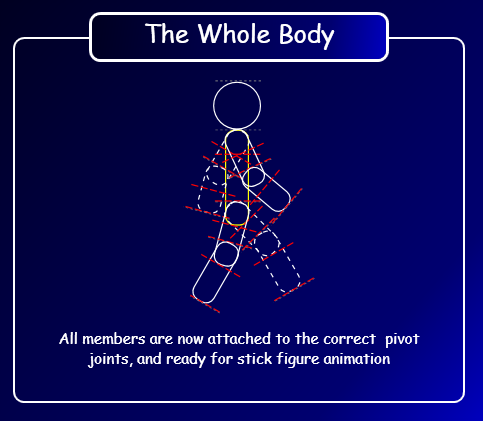 The Whole Body