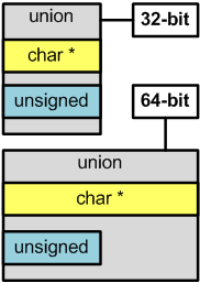 Figure 1 - The union format on the 32-bit and 64-bit systems
