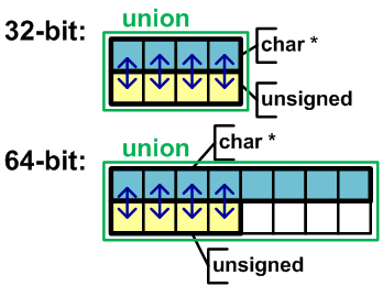 Figure 19 - Representation of a union in memory on a 32-bit system and 64-bit systems.