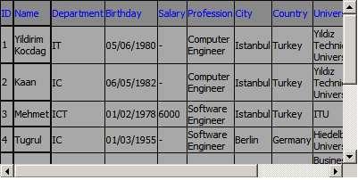 Screenshot - Datagrid1.jpg