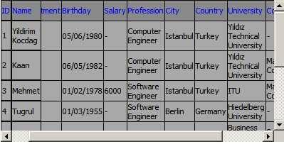 Screenshot - Datagrid2.jpg