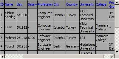 Screenshot - Datagrid3.jpg