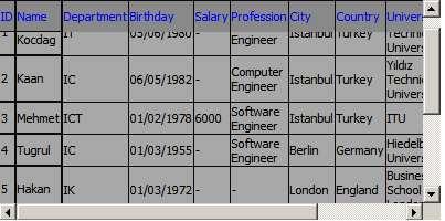 Screenshot - Datagrid4.jpg