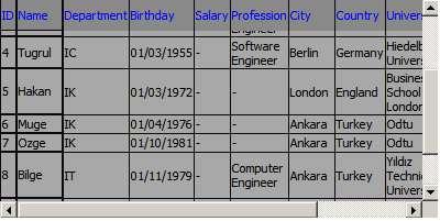 Screenshot - Datagrid5.jpg