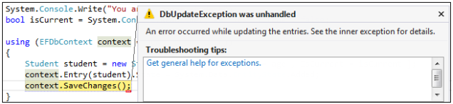 Database Update Exception