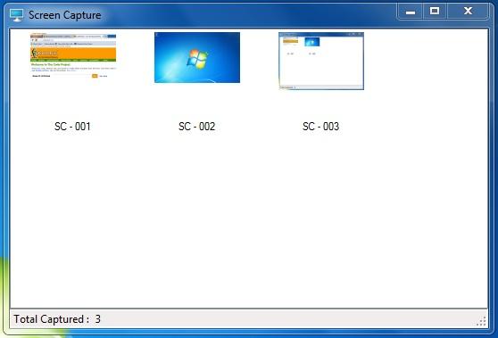 vb net screenshot
