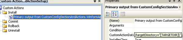 Set CustomActionData property value