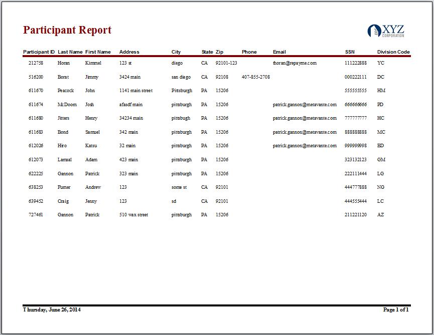 Participant Report
