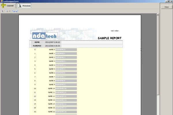 ReportPrintingFramework designer's preview sample