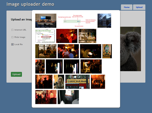 After entering a Flickr search query (tags) it is necessary to select the desired image