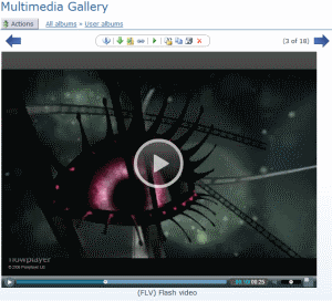 Screenshot - videoview.jpg