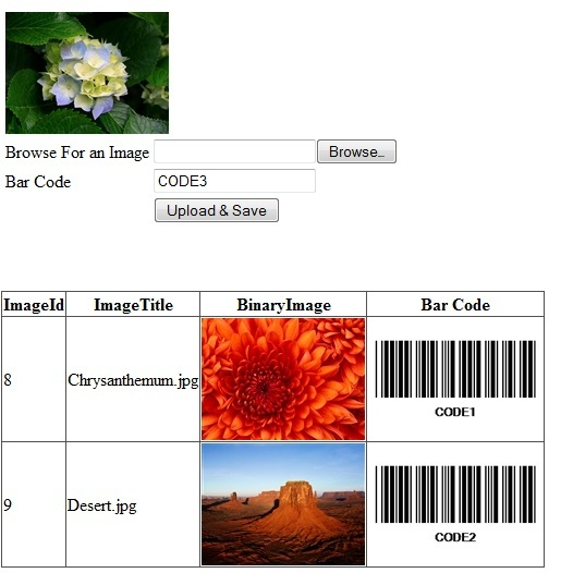 bar code image. a arcode as an image.