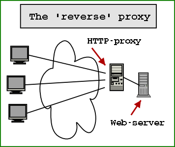 What is a reverse proxy web server