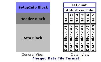 Merge Data File Format.