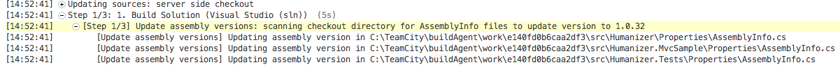 assembly info patch in build log