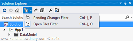 Filters in Visual Studio 2012 Solution Explorer