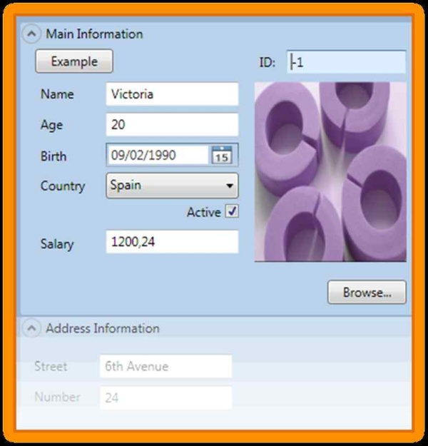Automatic WPF Mapping To A Database (Access 07 Edition