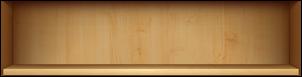 Libary shelf view