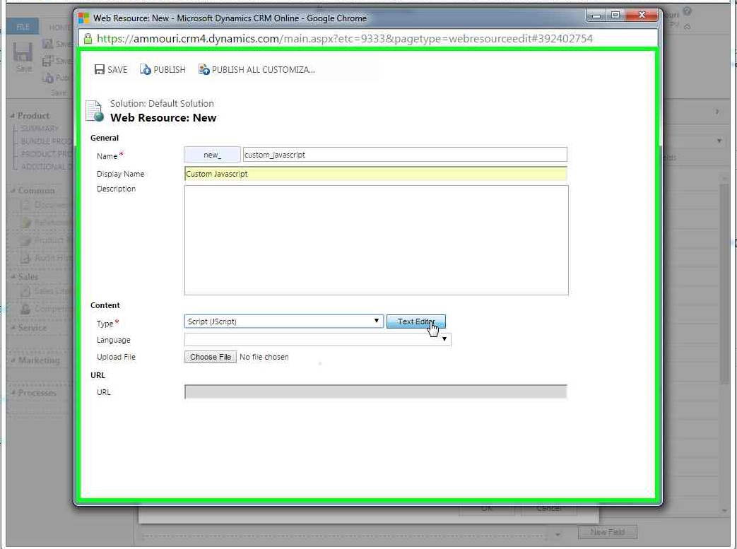 Improve user experience by styling and coloring Microsoft Dynamics