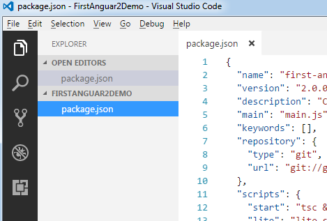 Package Json VS Code