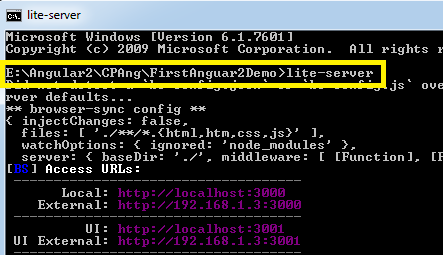 Run Lite-Server