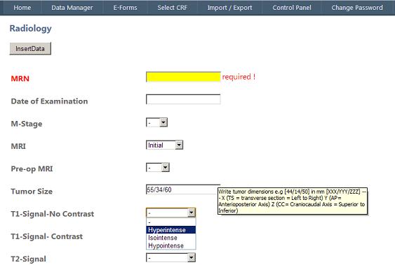 creating dynamic user friendly web