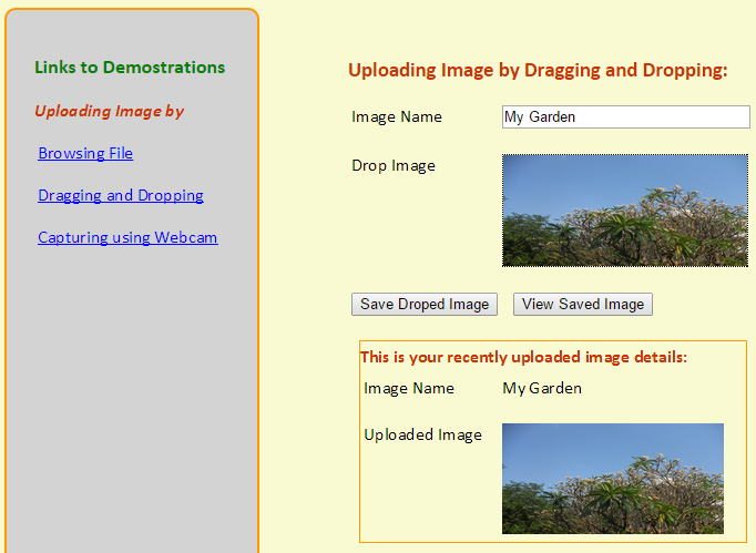 Uploading Image by File Browsing, Dragging & Dropping and
