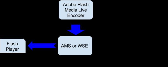 Adobe Flash Live Encoder broadcast testing diagram
