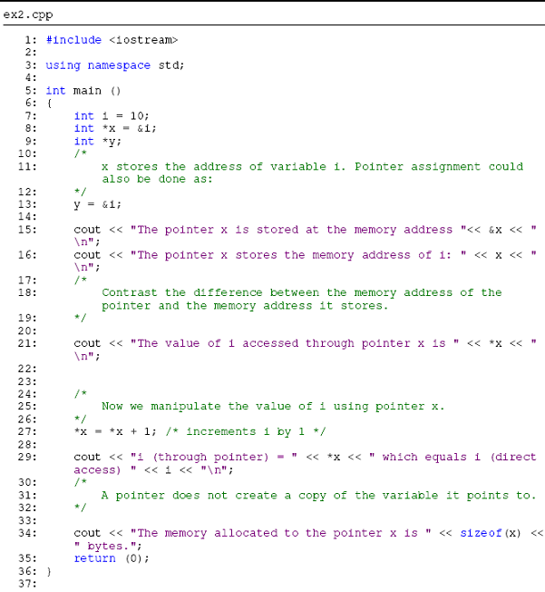 pointer in c programming examples pdf