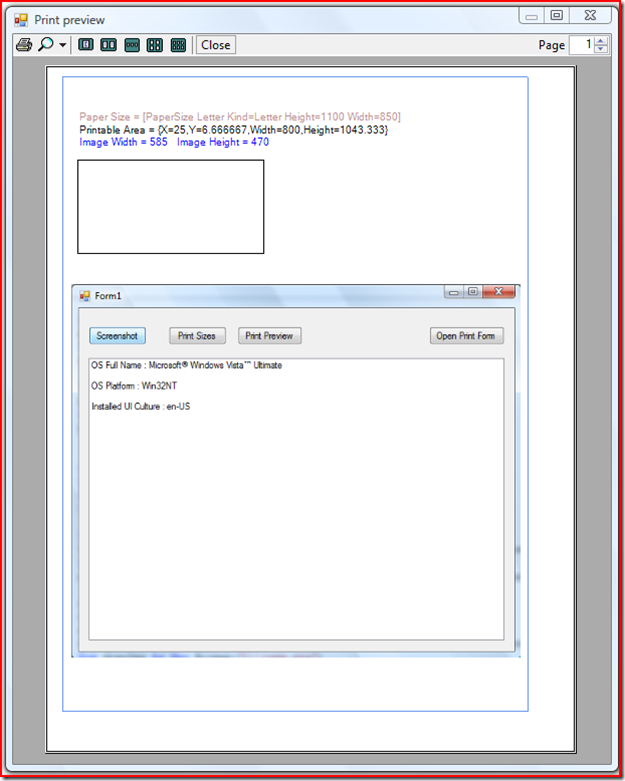 Windows Form Screenshot and Print Preview in VB NET
