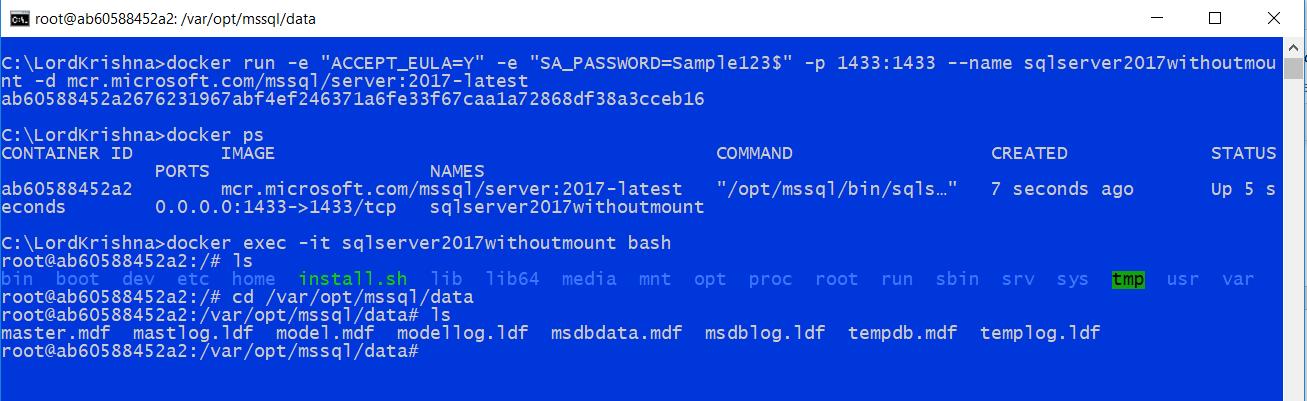 Using SQL Server 2017 Docker Container for Local Web API development