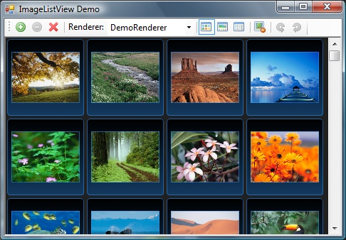 ImageListView with custom renderer