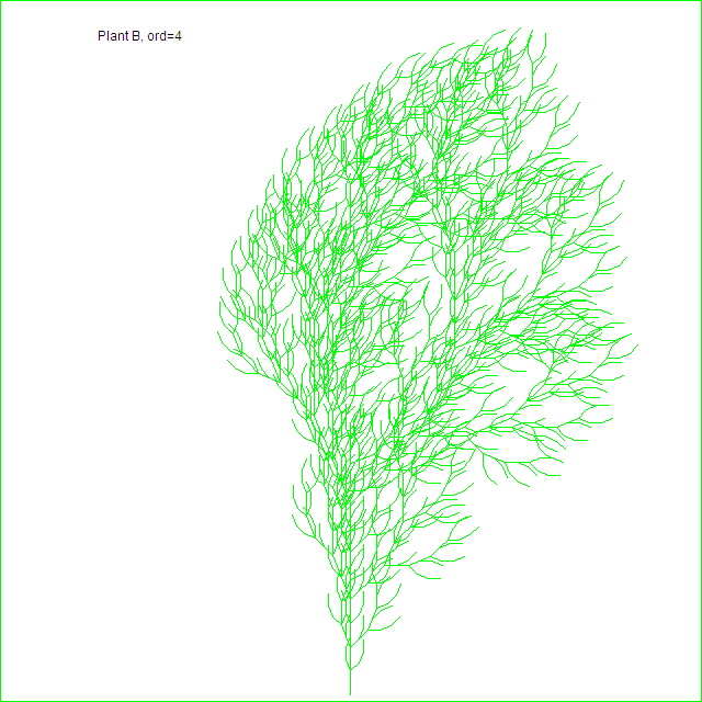 Plant B, order 4
