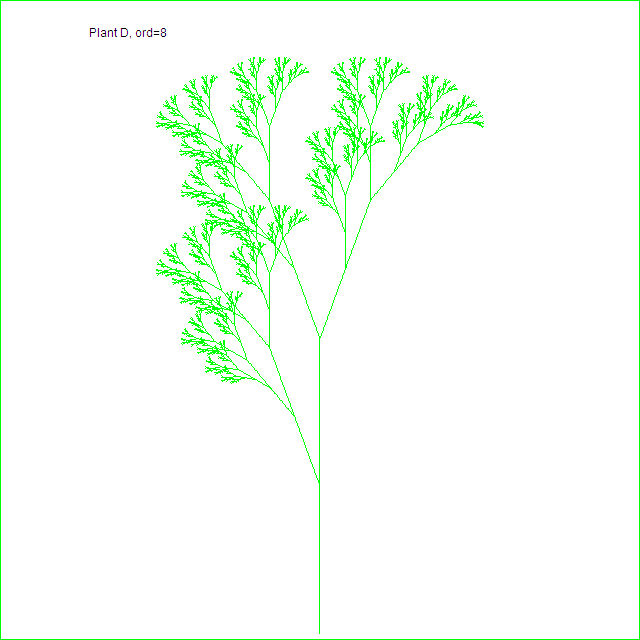 Plant D, order 8