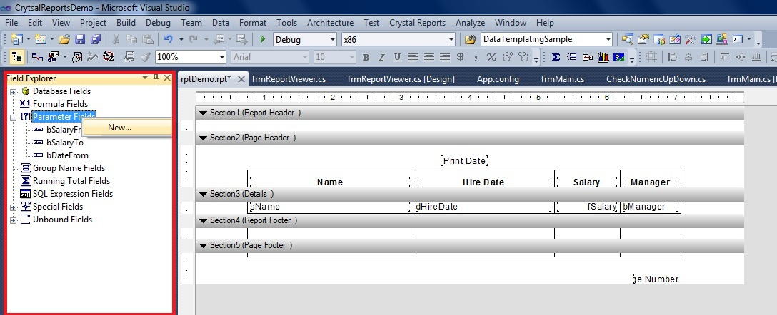 Visual studio 2010 report viewer stored procedure