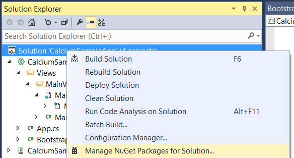 Manage NuGet Packages for the Solution