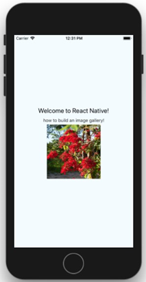 How to Build a React-Native Image Gallery Tutorial - CodeProject