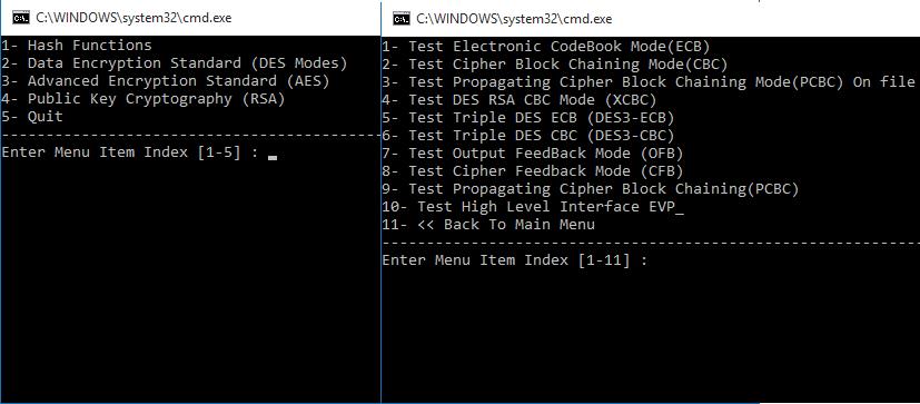 Cybersecurity openssl.