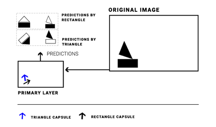 higher layer capsules triangle and rectangle predictions