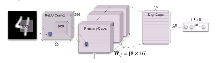 loss calculation dynamic routing between capsules.